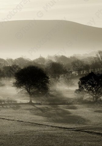 TGM-1003 GlendingView 15x21 