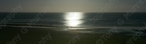 TGM-1018 MoonlightPanorama 63x19 copy 