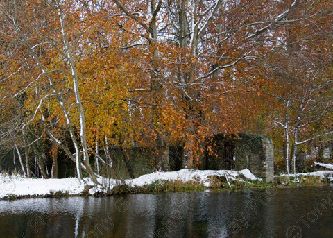 TGM-1028 Canal-Gate-View 14x10 