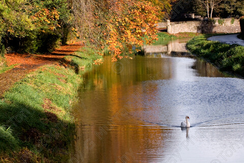 TGM-1023 CanalScene 12x8 